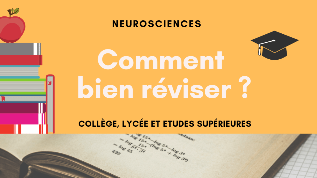 Comment bien reviser