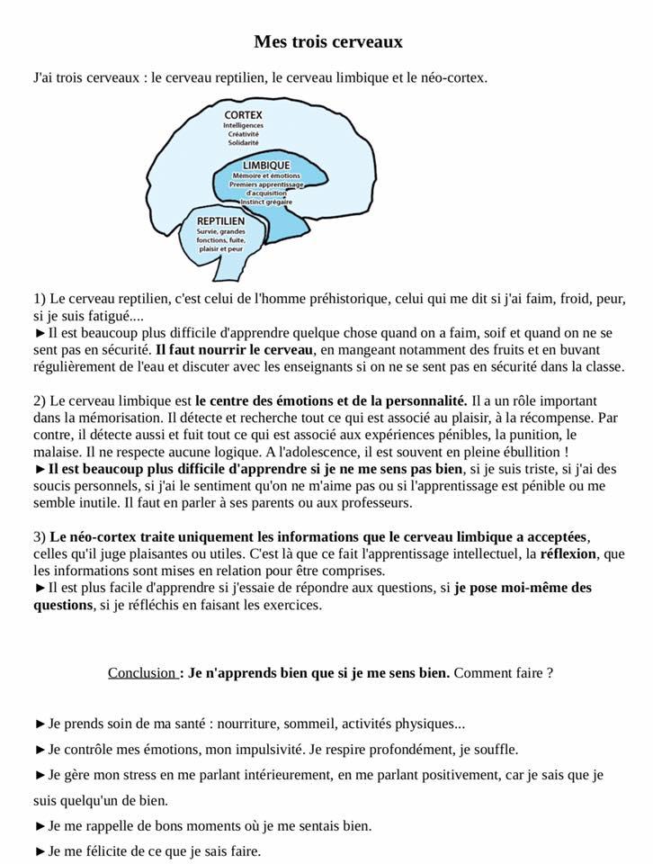 Neurosciences2